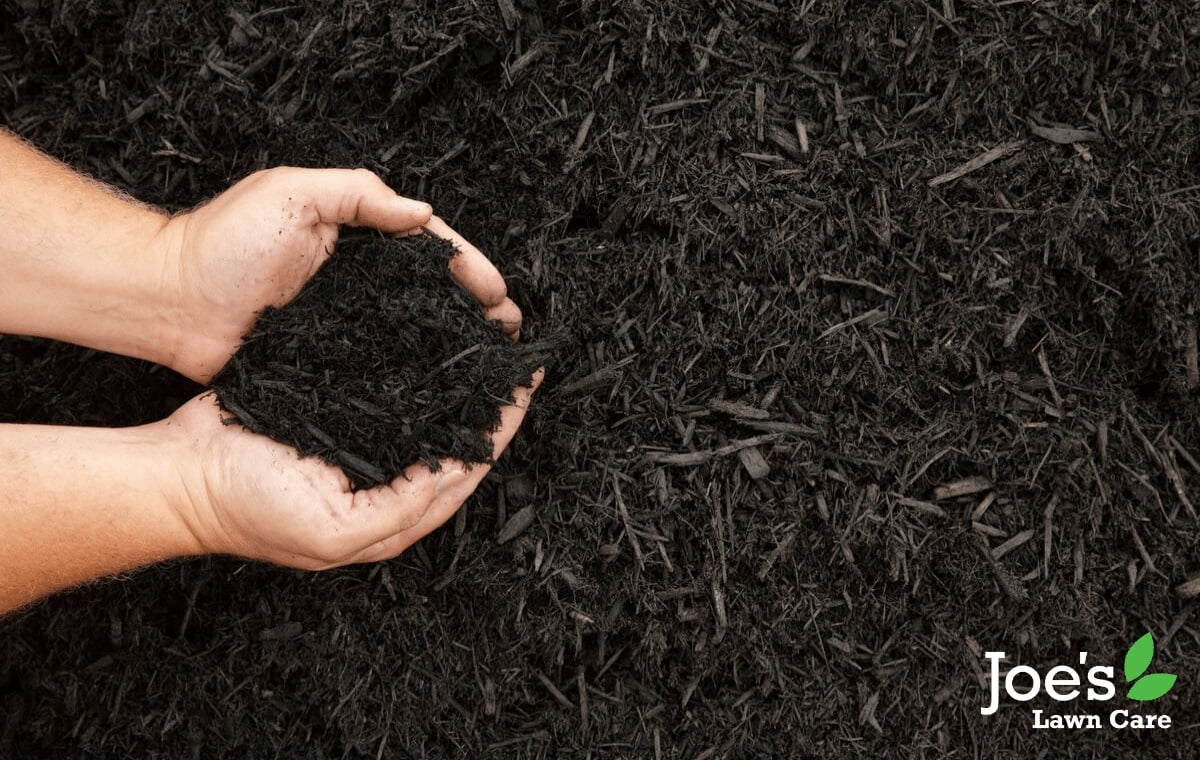 turn leaves into mulch