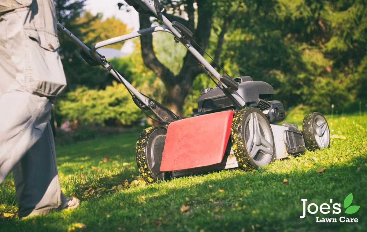 Mow the lawn - but not when wet