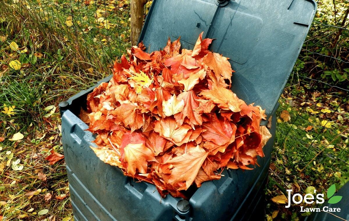 composting fallen leaves