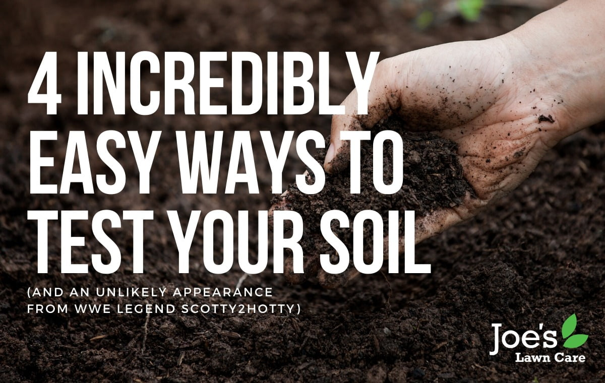 4 incredibly easy ways to test your soil