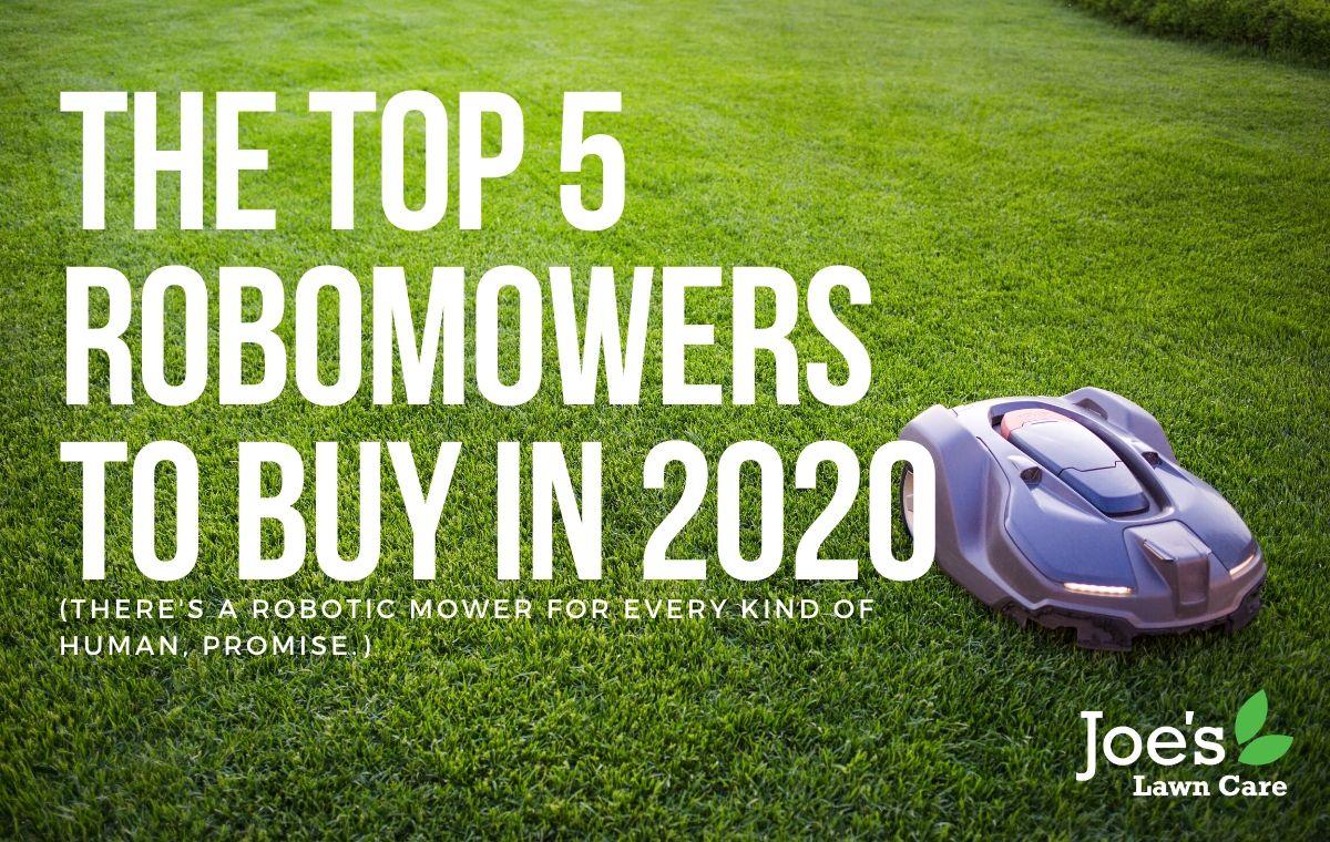 top 5 robomowers in 2020