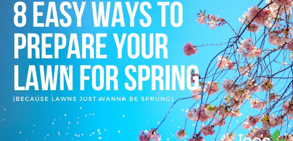 8 ways to prepare your lawn for spring