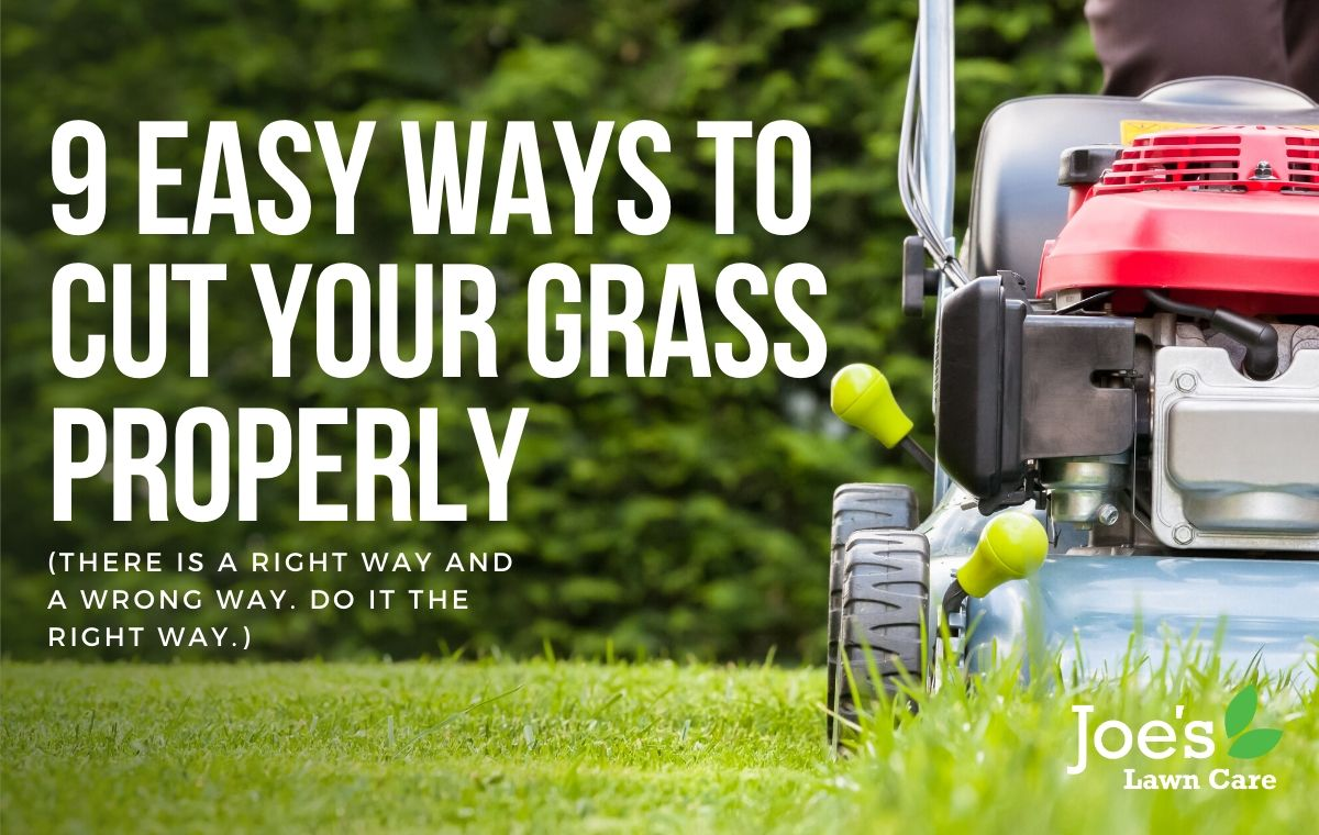 9 Easy Ways To Cut Your Grass Properly
