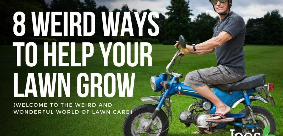 8 weird ways to help your lawn grow
