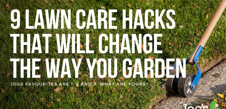 9 Lawn Care hacks that will change the way you garden - Joe's Lawn Care