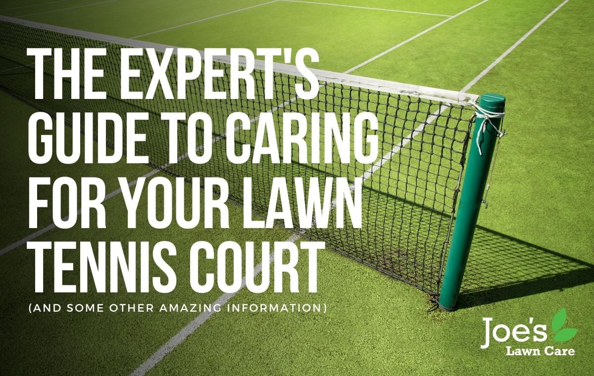 The Expert's Guide To Caring For Your Lawn Tennis Court