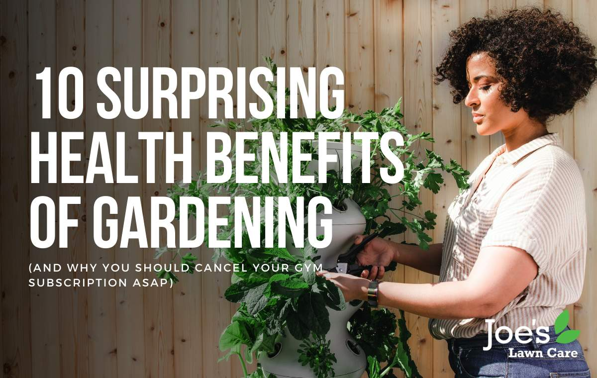 Benefits to gardening