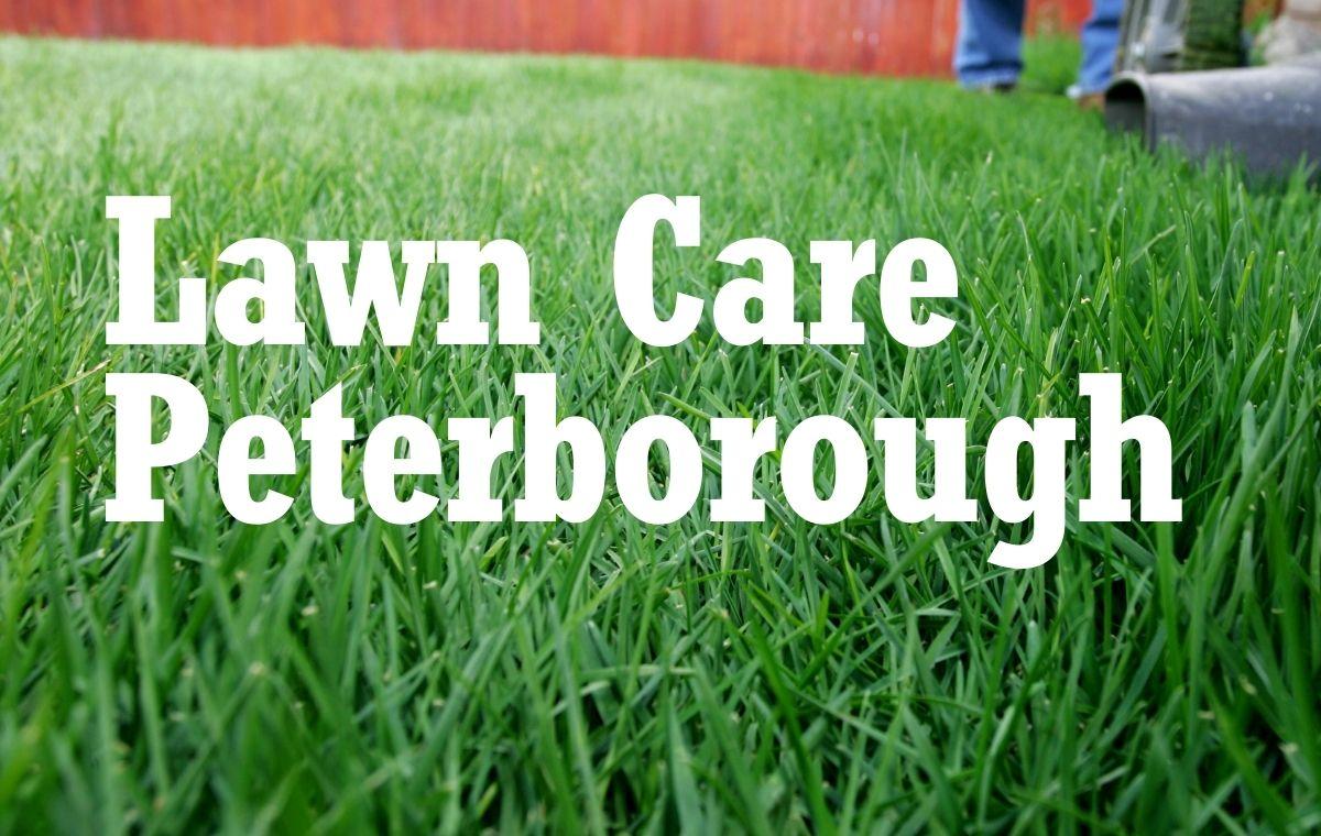 Lawn Care Peterborough